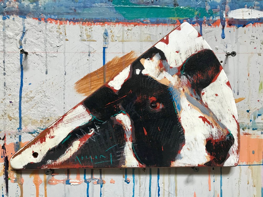 TIM JAEGER, COW CHEESBOARD, 2019