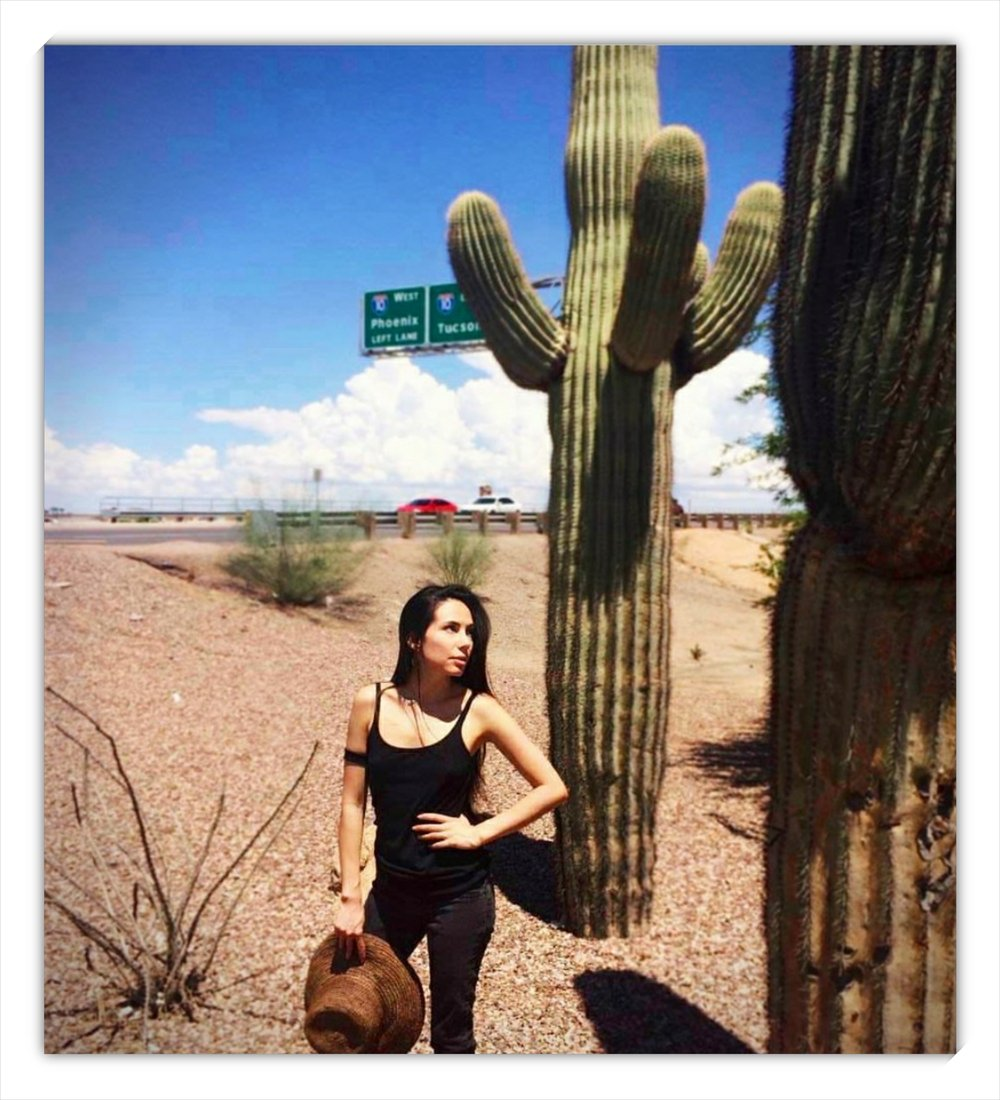I did make it to the desert shortly after Her Seer Eyes was completed! - Between Tucson and Phoenix, Arizona, Summer 2017