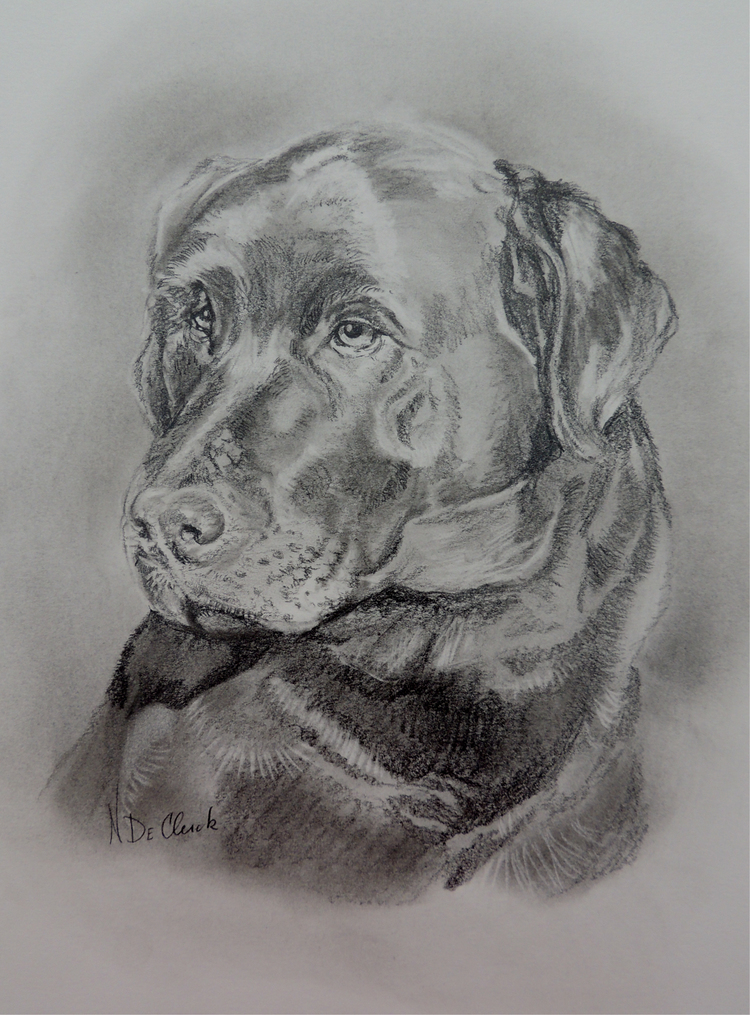 Graphite Portrait - Pencil Portraits begin at just $75 and are done from your favorite photo.