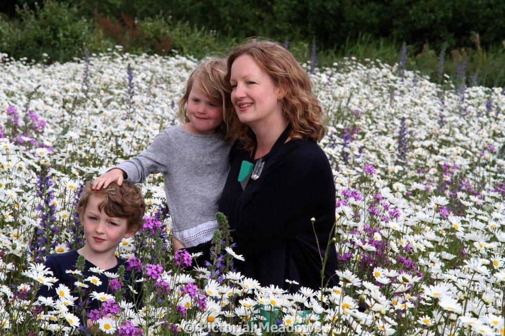 Wildflower meadows in London Parks.JPG