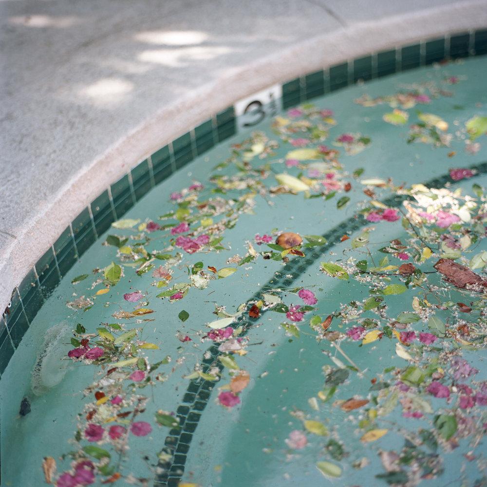 Palm_Springs_10.jpg