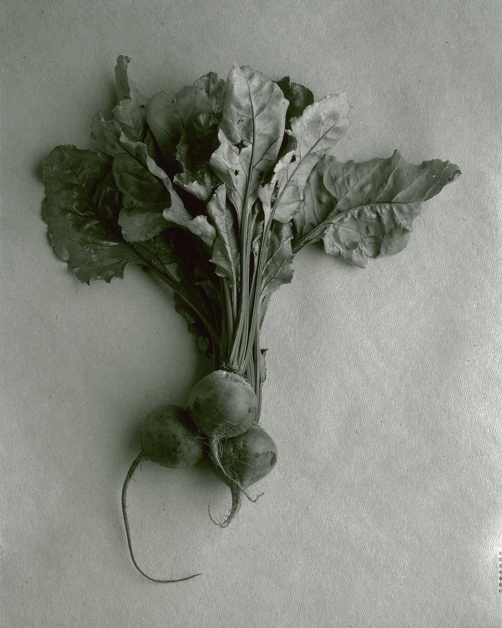Organic Beets.jpg