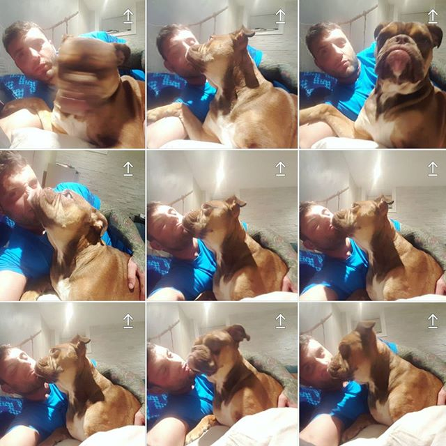 When you and your dog are adorable AF and regularly have selfie photosheshes... 📸😎🐶