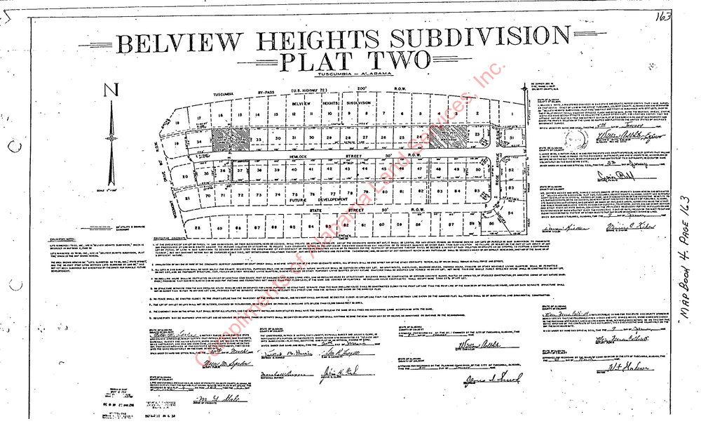 Belview Heights Plat 2 plat-2.jpg