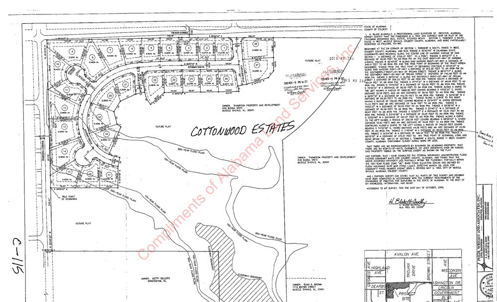 Cottonwood Estates plat-1.jpg