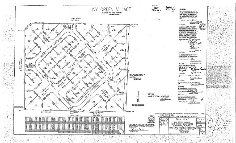 Ivy Green Village-plats-1.jpg