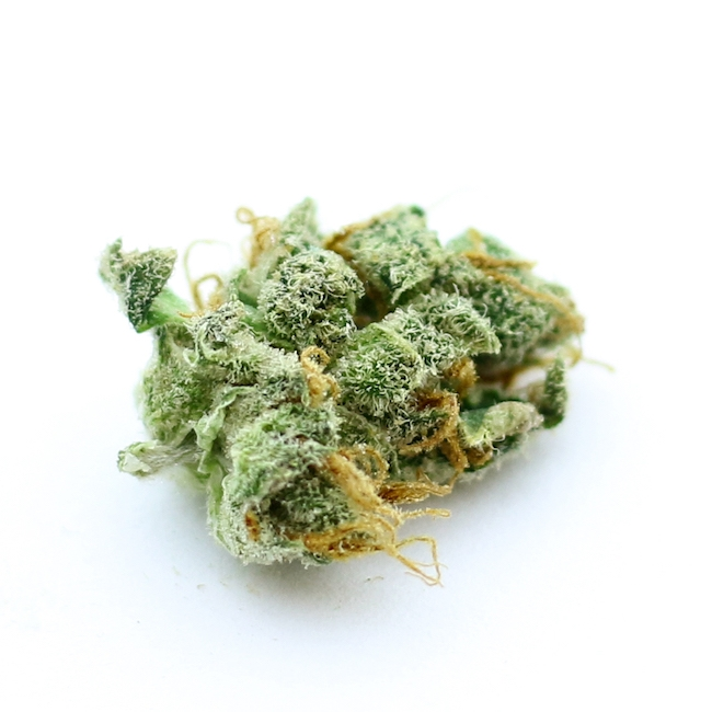 Race Fuel OG Strain Colorado