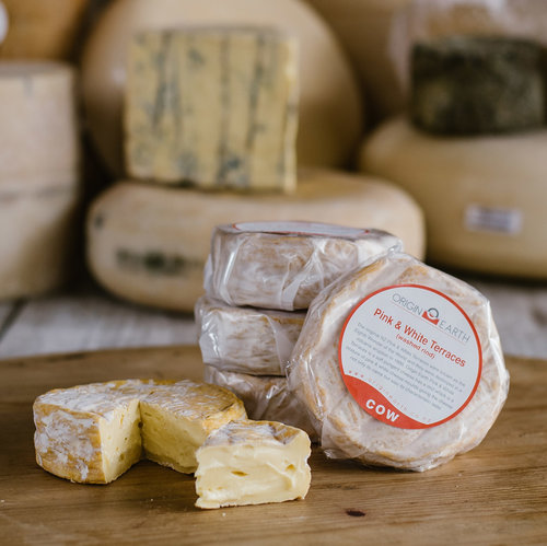 origin-earth-cow-pink-and-white-terraces-washed-rind-cheese.jpg