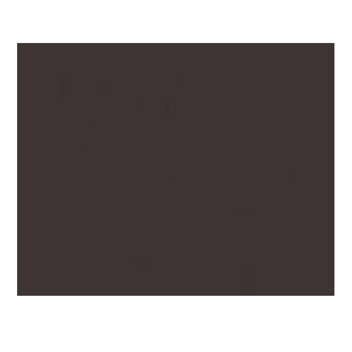 white whale metaphor