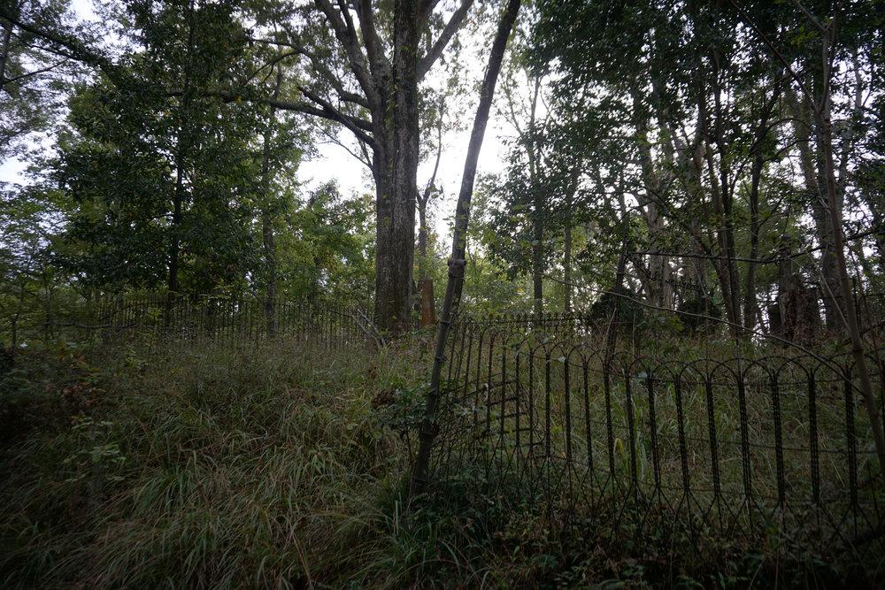 rodney cemetery_2.jpg