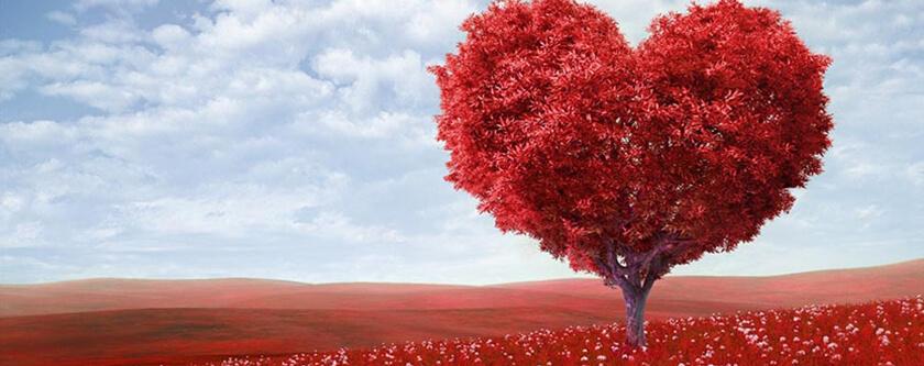 Valentines-Day_androidauthority.com_.jpg