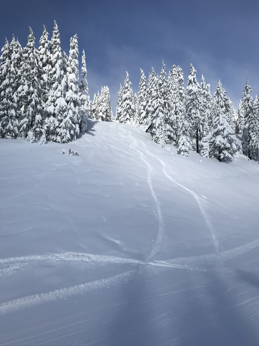 Here is a shot of some tracks a buddy and I laid down on the first run. His ski tracks on the left, my snowboard tracks on the right. Oh to just relive it! Image Courtesy: Dan Meyers