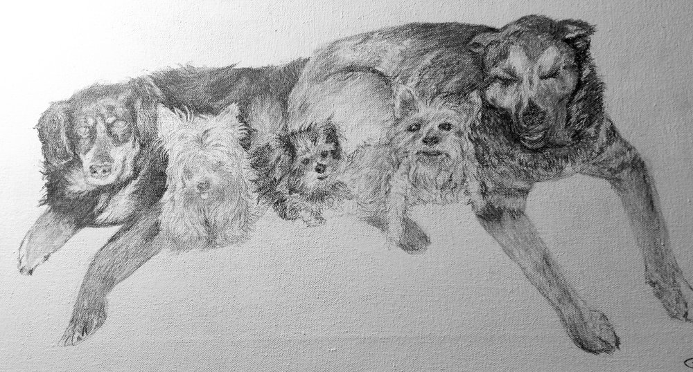 This is a pencil drawing I did for someone of here past and present pets. I had a bunch of pictures from her and had to arrange the composition