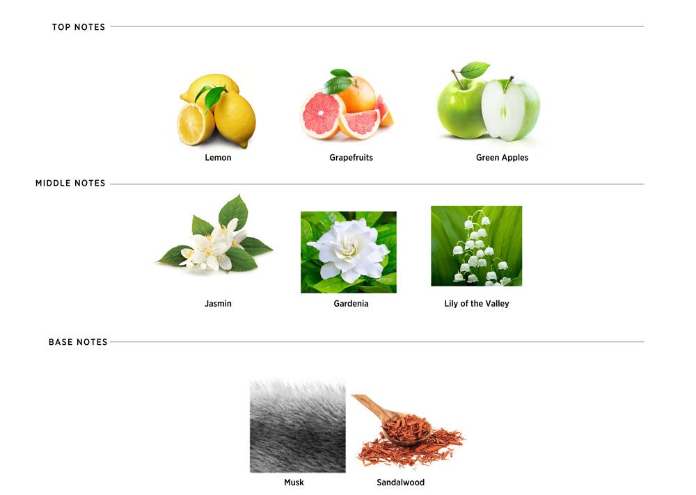 fragrancenote_sportivio.jpg