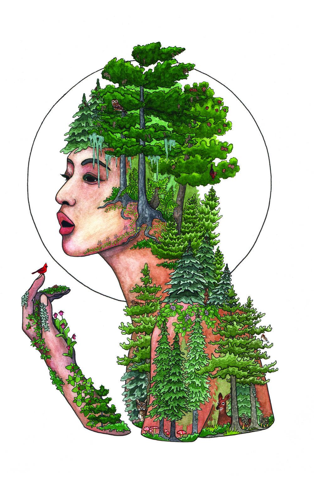 The Coniferous Forest, 2018    Pen & Watercolor