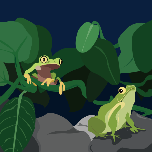 Frogs-640x640.png