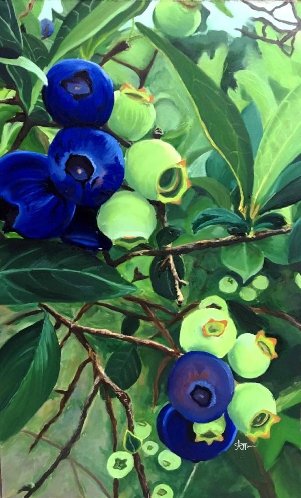 Blueberries low res.jpg