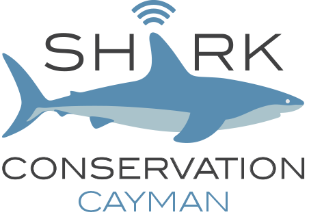 Shark Tracker KY