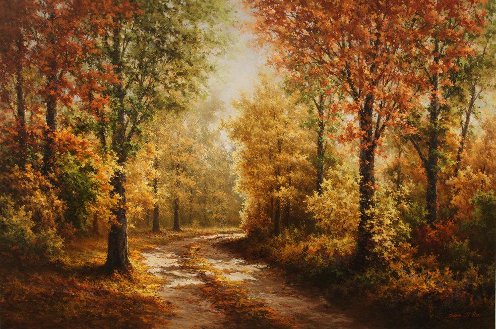 Autumn Forest Road.jpg
