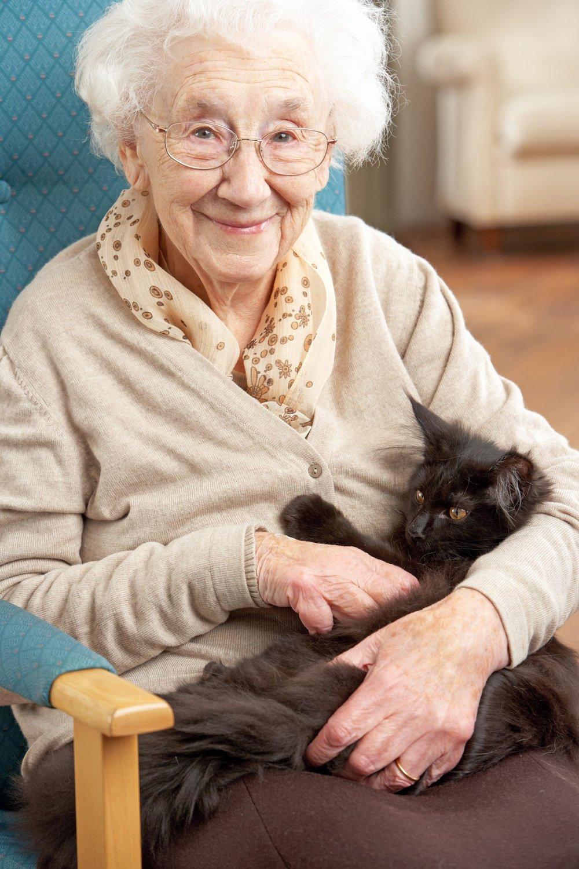 woman-cat.jpg