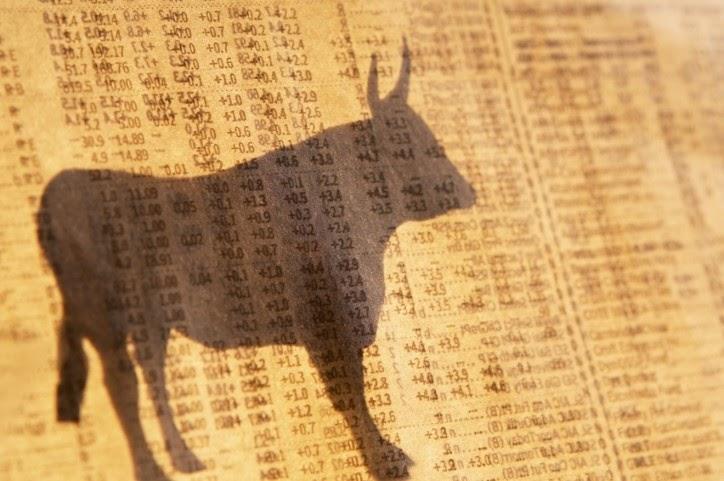 Bull-on-Stock-Page-724x481.jpg