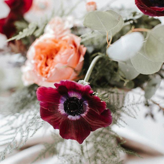 And just like that, Spring is here! 💐: Angela Woodard . . . #florals #floralshoot #seattleflorals #bts #behindthescenes #floralphotography #thatpacificnorthwestlife #pacificnorthwest #pnwonderland #pnwphotographer #livewashington #washingtonexplored #seattlephotographer #seattleevents #seattleeventspace #seattle #seattlephotography #lifestylephotography #seattlelifestyle #seattlecreative #seattlelifestylephotography #artist #seattleartist #whiteonwhite
