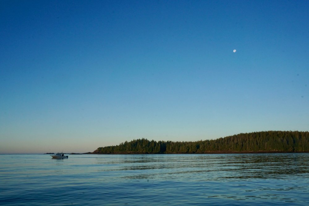 Early morning on the water with Tofino 1st Class Fishing.