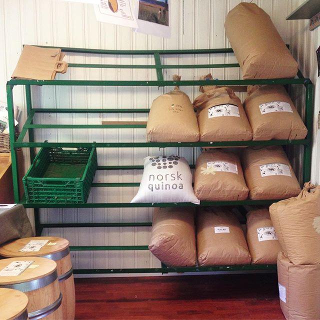 På onsdag fylles denne hylla i Bua med deilige grønnsaker fra @rammegaard ! Du kan fortsatt bestille (link i bio) 🥕