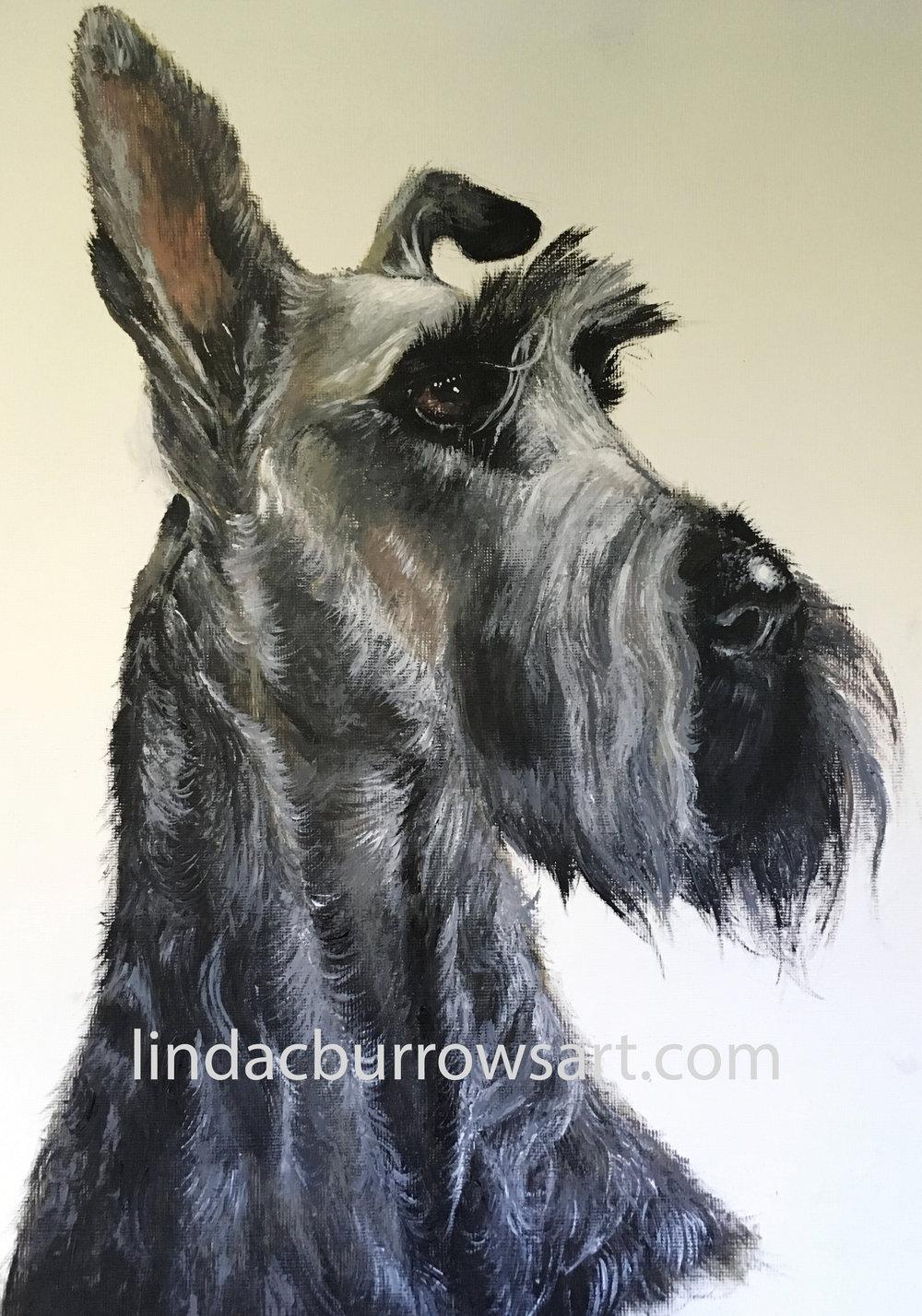 Rufus, 2018. Acrylic on canvas
