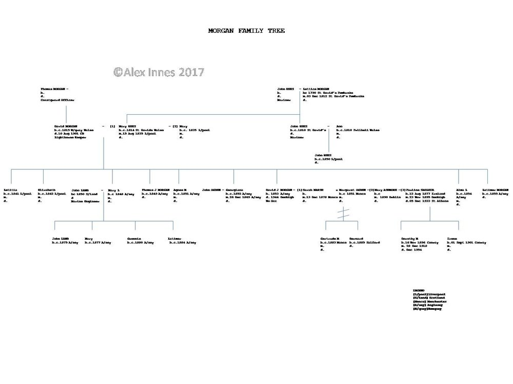 The above illustrates a branch of the MORGAN family in Wales.