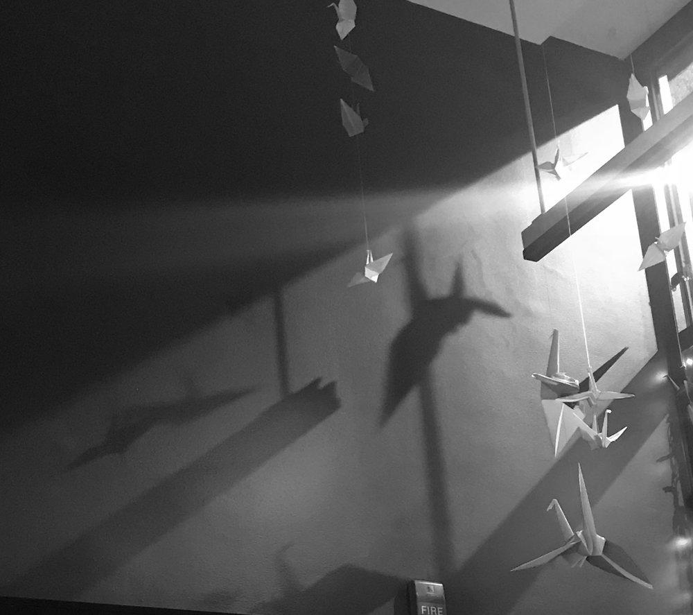 Black and white shadows.jpg