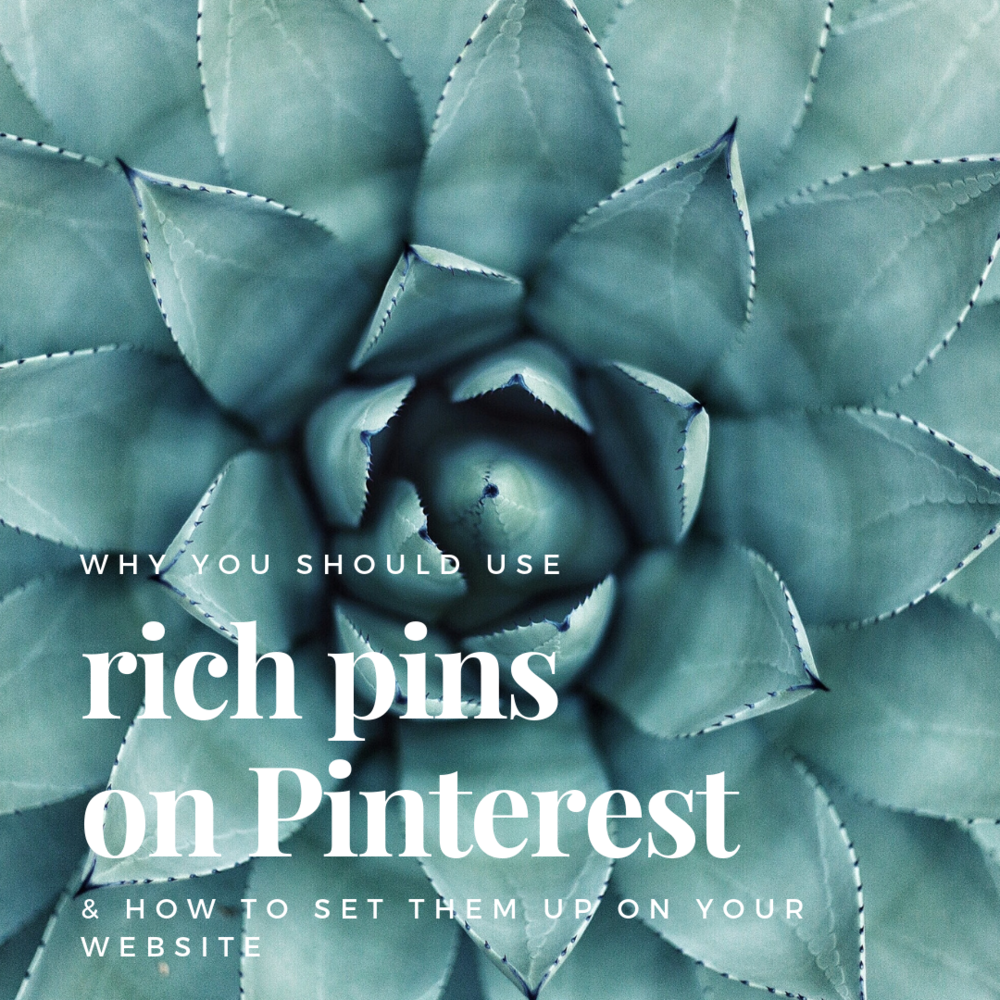 why you should use rich pins and how to set them up