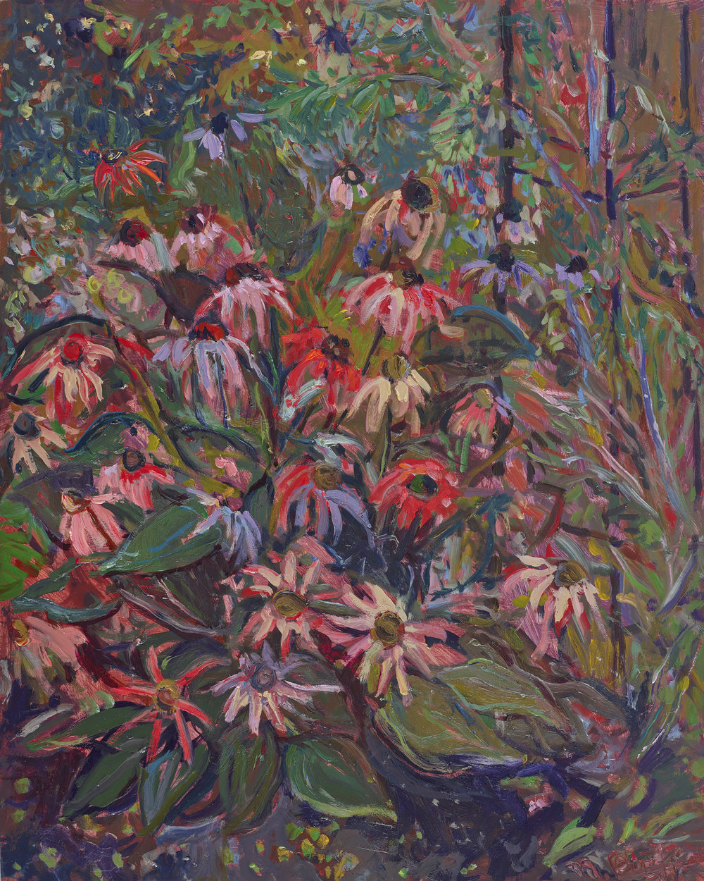 Cone Flowers  20X16 - Oil on Clayboard