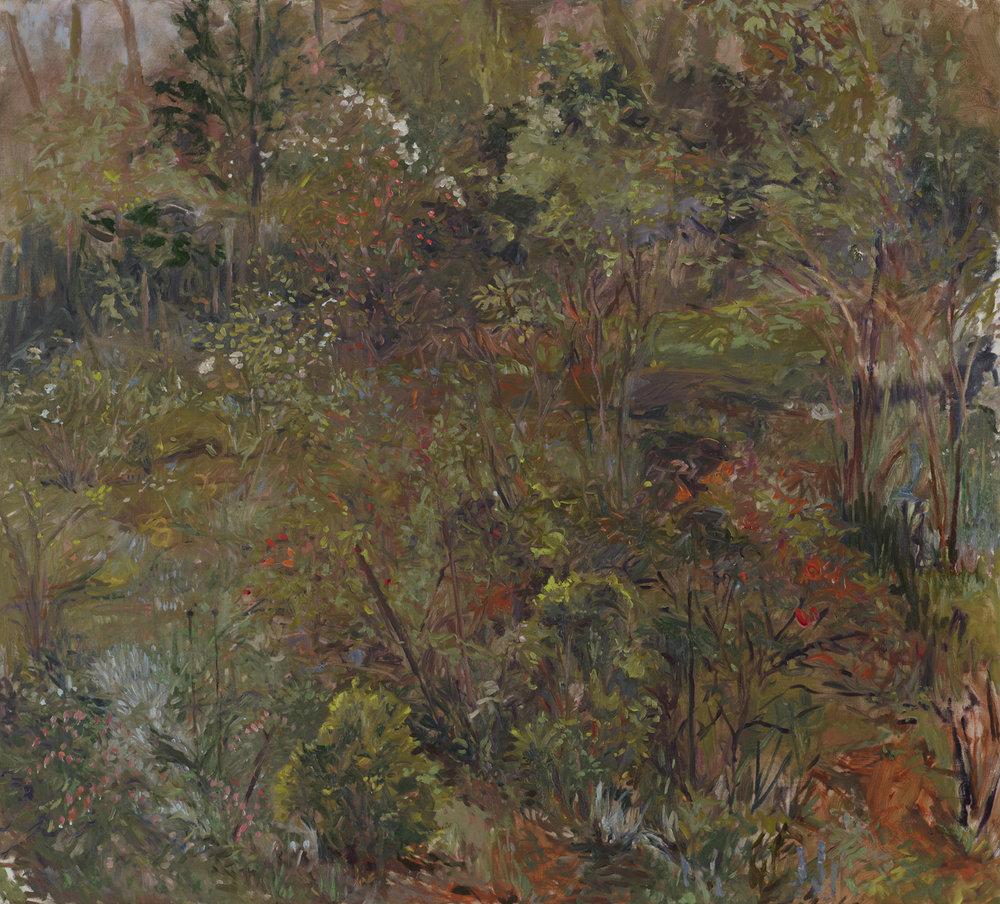 Garden Stage One  36 X 40 - Oil on Linen