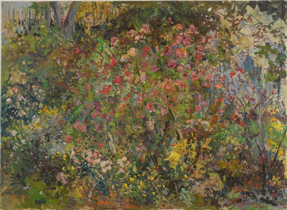 Rose Garden, Full Bloom  38X46 - Oil on Linen