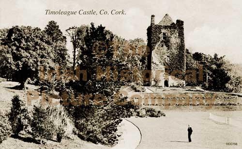 Timoleague Castle.jpg