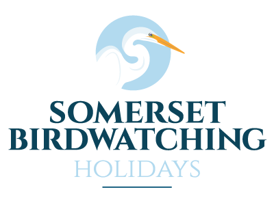 Somerset Birdwatching Holidays