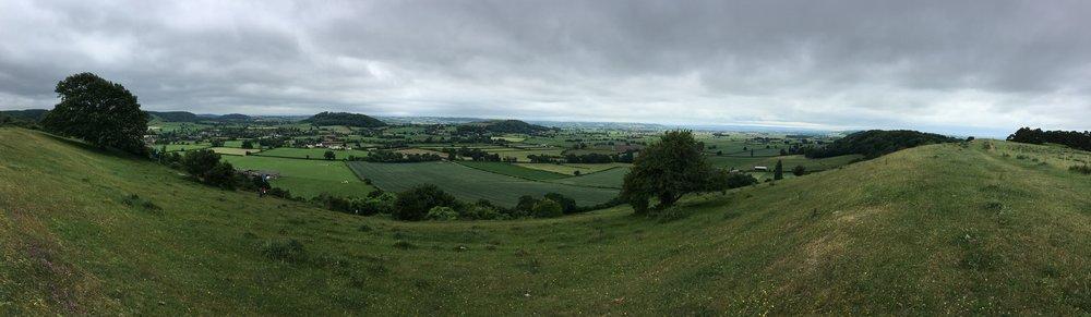 Collard Hill vista