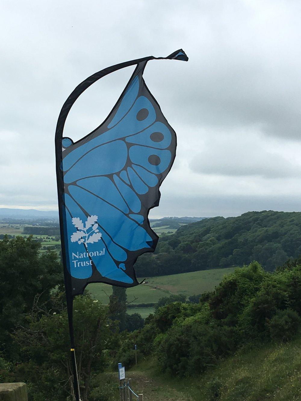 National Trust Collard Hill