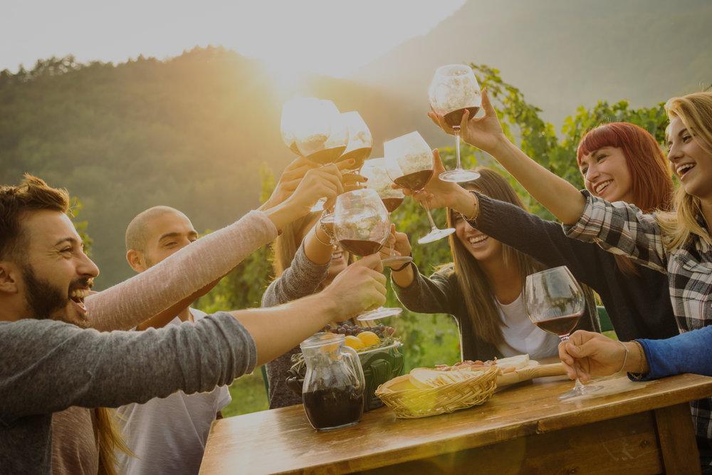 Wine Tour -