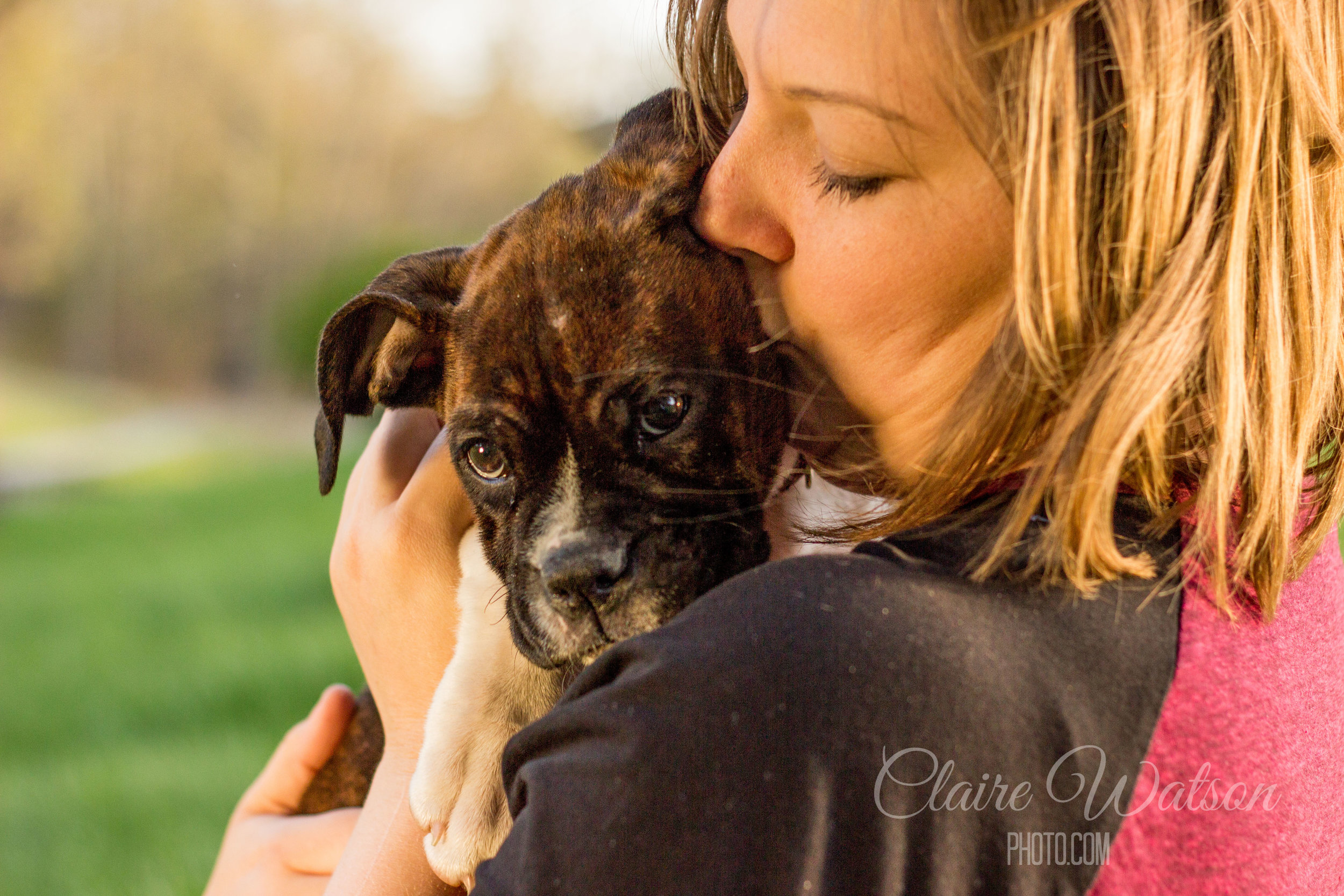 Pet Photography, Martinsburg, WV