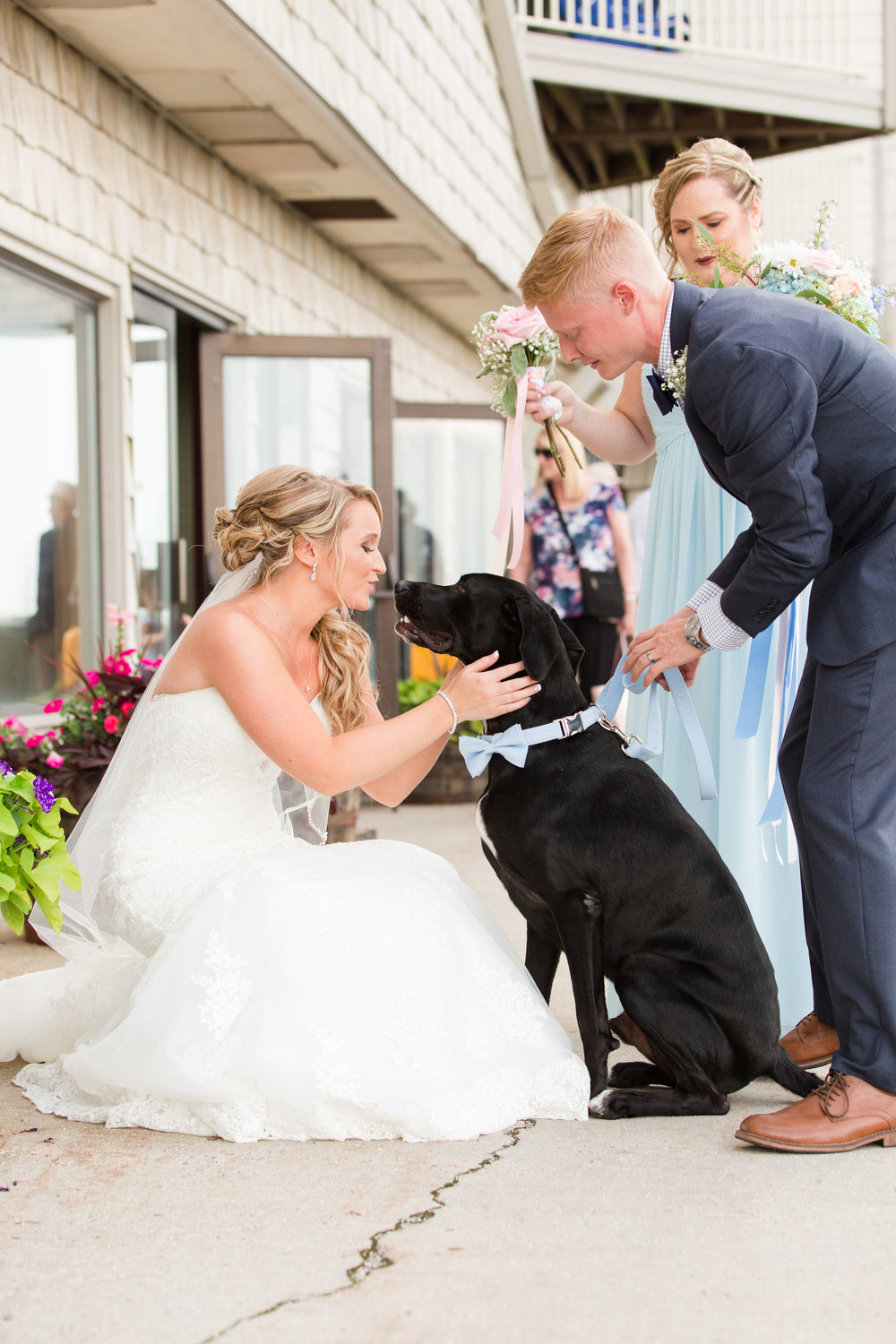 ring bearer dog-1.jpg