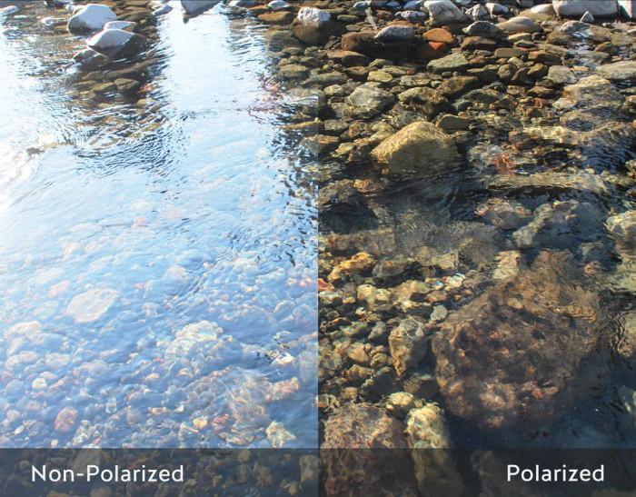 Polarized vs Non-polarized Lenses.jpg