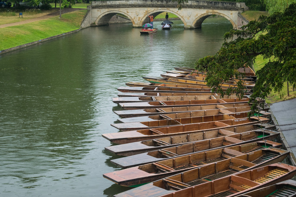punts and bridge.jpg