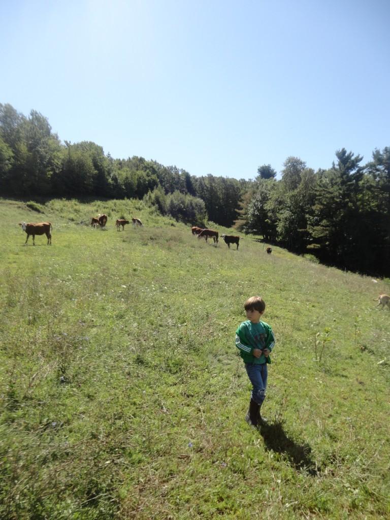 farm-tour-05411
