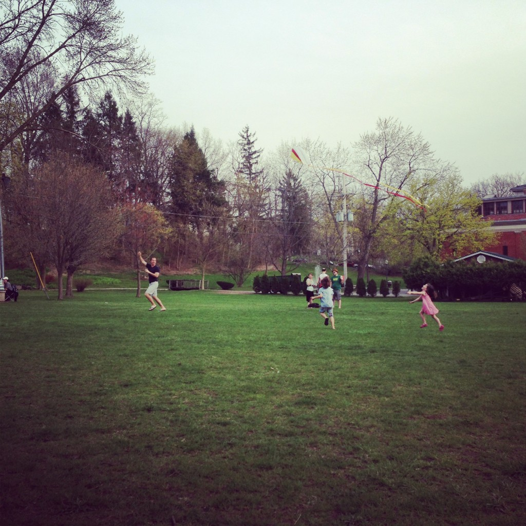 picnic 1-25
