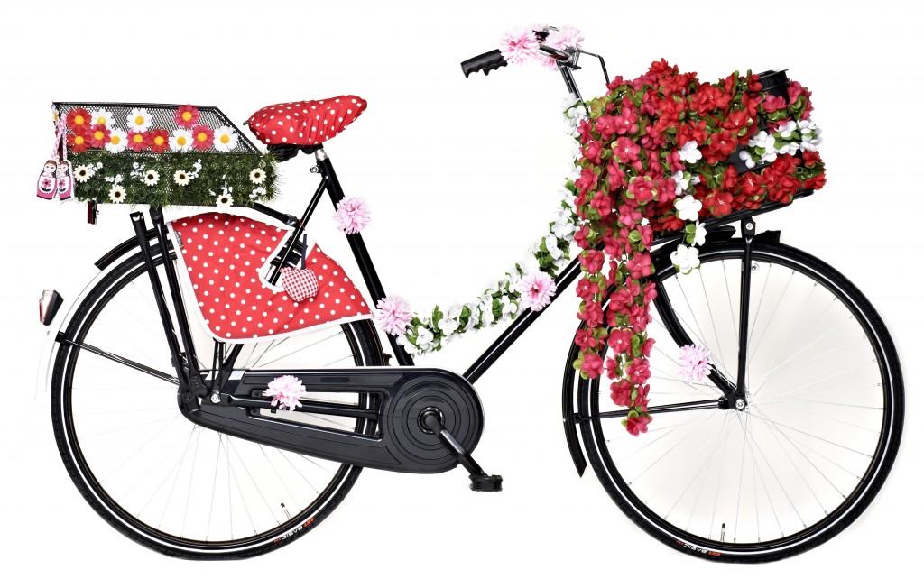 Basil-Pimp-your-bike