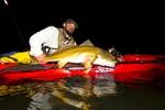 mirage-revolution-11-redfish-night-florida_jpg_150x100_crop_generated.jpg