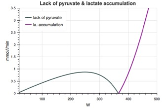 Possible recovery rate from lactate accumulation (lack of pyruvate - gray curve) and lactate accumulation (purple curve) as a function of power output in cycling