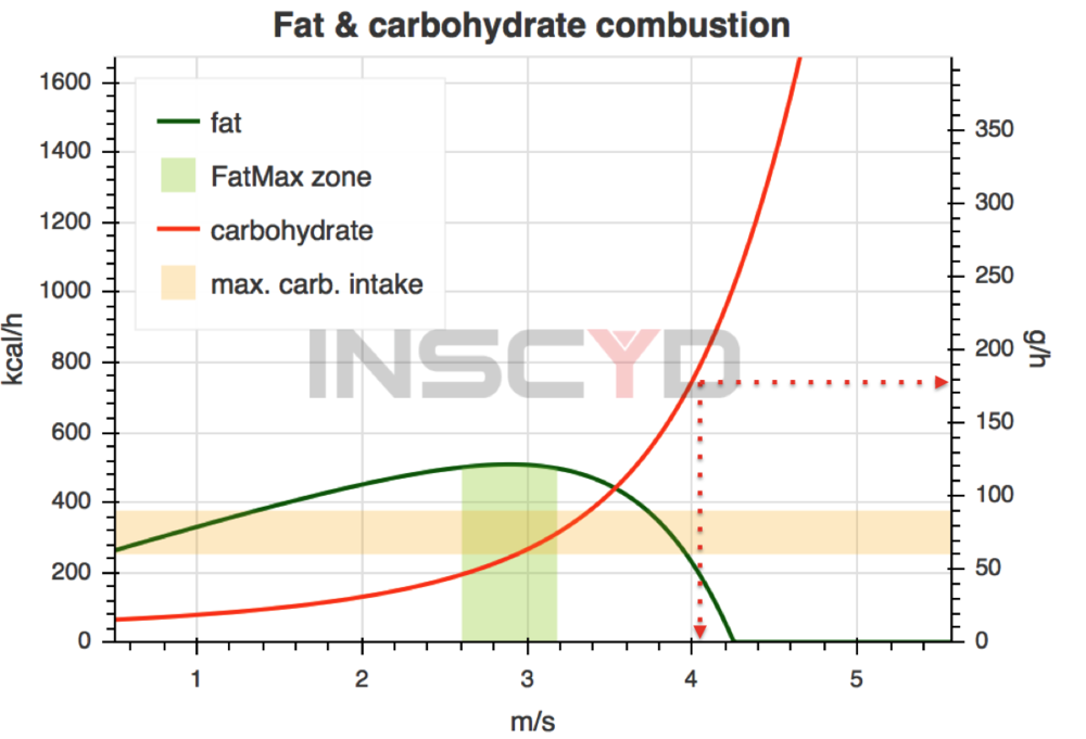 The Fat & Carbohydrate combustion curves of Bernat a few days before the Marathon. Data derived from simple field lactate testing